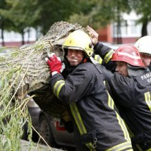 Savaitgalį šalyje virto medžiai: užtvėrė kelius, apgadino automobilius