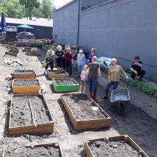 Įgyvendindami ekologiškų daržų idėją, miestuose buria bendruomenes