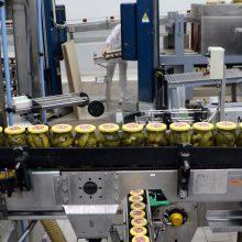 Tik kartą per metus: į stiklainius – 1 200 tonų agurkų