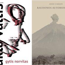 Knygų apžvalga: nuo nepatogios literatūros iki senųjų mitų