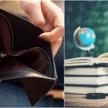 V. Šapoka: pinigų mokytojų poilsiui biudžete nėra
