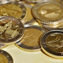 Lietuva vidaus rinkoje pasiskolino 35 mln. eurų