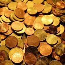 Vyras muitininkui įteikė penkių eurų kyšį – dabar mina teismo slenkstį