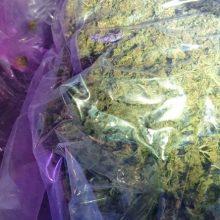 Uostamiestyje sustabdyto automobilio bagažinėje – narkotikai
