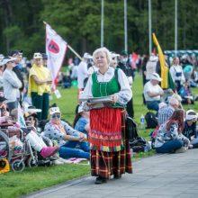 Vilniaus valdžia: Šeimos gynimo marše buvo gausiai vartojami alkoholiniai gėrimai