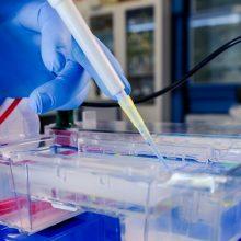 SAM: nacionaliniu mastu pradedami vykdyti COVID-19 mutacijų tyrimai