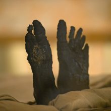 Apstulbino net muitininkus: mumijas iš šalies mėginta išvežti garso kolonėlėje