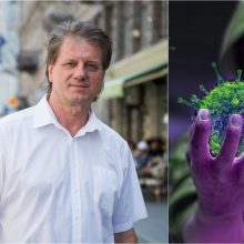 S. Čaplinskas: dauguma žmonių mirs ne dėl koronaviruso, o dėl netiesioginės žalos