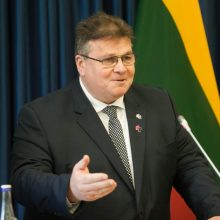 L. Linkevičius: kartu su Rytų partneriais turime projektuoti europinę ateitį
