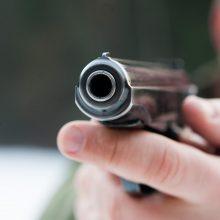 Seimas sugriežtino pusiau automatinių ginklų prieinamumą