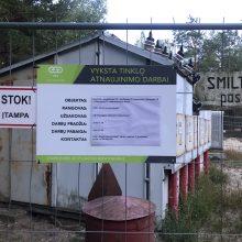 Pajūrio miškuose įsibėgėjo elektros tinklo rekonstrukcija