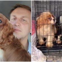 Šunų pragare atsidūrė ir Rokiškio mero šuo: saugiai jaustis negalime nė vienas