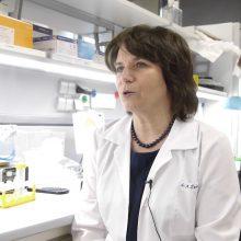 Mokslininkė atskleidė, kaip užtikrinti žmonių atsparumą virusams