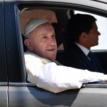 Popiežius Pranciškus: miškų naikinimas kelia pasaulinę grėsmę