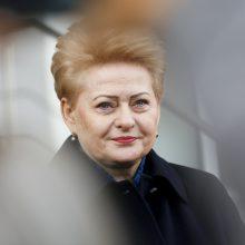 D. Grybauskaitė: šie rinkimai – geriausia, kas galėjo nutikti Lietuvai šiuo metu