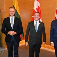 G. Landsbergis: Lietuvos santykiai su Kanada ir JAV yra nepakeičiami