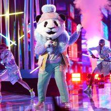 Keisčiausias pasaulio dainavimo šou – ir Lietuvoje: laimės Ananasas ar Panda?