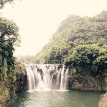Pasaulyje pernai neliko 12 mln. hektarų atogrąžų miškų