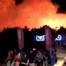 Dėl miško gaisro populiarioje Kroatijos saloje evakuota 10 tūkst. turistų