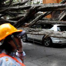 Taivane per 6,1 balo žemės drebėjimą sužeisti 17 žmonių