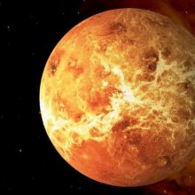 Kur dingo Veneros palydovas?