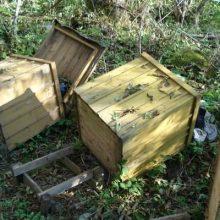Vandalai siautėjo Radviliškio rajone: išniekino bičių avilius
