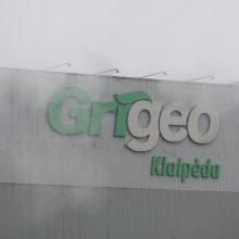 """""""Grigeo Klaipėda"""" teismui pateikė antrąjį ieškinį – siekia prisiteisti 1,4 mln. eurų"""