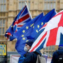 """""""Brexit"""" derybininkas: sprendimas yra svarbiau nei papildomas laikas"""