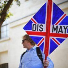 """Belgijoje rengiamos nuo """"Brexit"""" pavojų neapsaugotų ES narių derybos"""