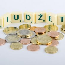 Gyventojų pagalba į šalies biudžetą grąžinta 40 mln. eurų