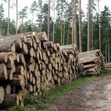 Pritarta K. Mažeikos siūlymui – bus ribojamas įsigyjamo miško plotas