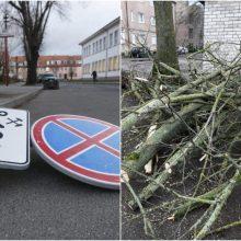 Įsisiautėjęs vėjas pridarė žalos pajūryje: plėšė trispalves, vartė medžius