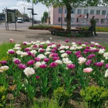Pražydusios seniūnijos Klaipėdos rajone – bendrystės rezultatas