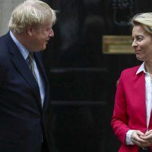 """B. Johnsonas ir EK vadovė sutarė toliau ieškoti išeities iš """"Brexito"""" aklavietės"""