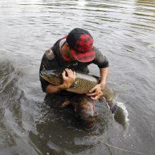 Dėl naikinamo telkinio – Klaipėdos žvejų nerimas