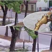 Gertuvę Ferdinando aikštėje pavertė fontanu
