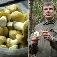 Lietuviai pamiršta atsargumą: į krepšius deda Europoje uždraustus grybus