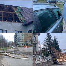 Uostamiestyje siautusi audra pridarė žalos: vartė medžius, žmonės liko be elektros