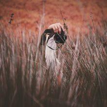 Griaunama priklausomybės ligų stigma: kviečia dalyvauti fotografijų konkurse