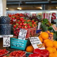 Turgaviečių grimasos: klaipėdiečius nustebino lietuviškų braškių kaina