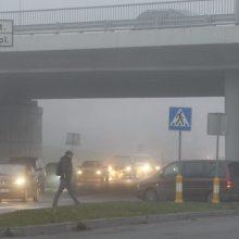 Prokuratūra pradėjo tyrimą dėl dirvožemio užterštumo Klaipėdoje