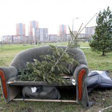 Likusios Kalėdų eglės – ir sodininkams, ir žvėreliams