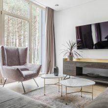 Pagrindinis namo interjero akcentas – miškas