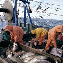Penktadienis – paskutinė diena žvejojantiems teikti paraiškas paramai