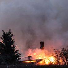 Anykščių rajone dega ūkinis pastatas: įvykio vietoje – gausios ugniagesių pajėgos
