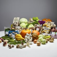 Lietuviškas daržoves renkasi dvigubai daugiau šalies gyventojų nei pernai
