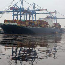 Nauji terminalai neišjudino uostų krovos