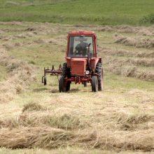 Perspėja ūkininkus: baigiasi šienavimo terminas