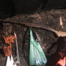 Drama Pakruojo rajone: namuose siautėjo girtas ir ginkluotas vyras