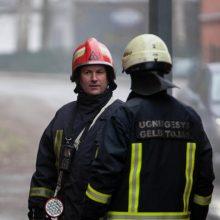 Klaipėdoje degė butas: pavyko išgelbėti šuniuką